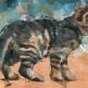 Kitten-dorus-brekelmans